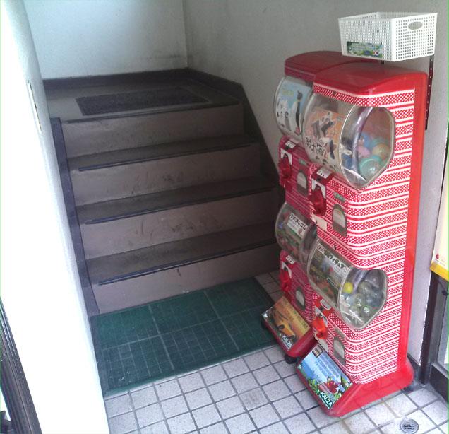 北九州 ペットショップ